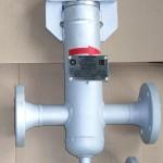 Фильтр ФЖ-НП-50-100-1-ХЛ1 с рычаговой крышкой